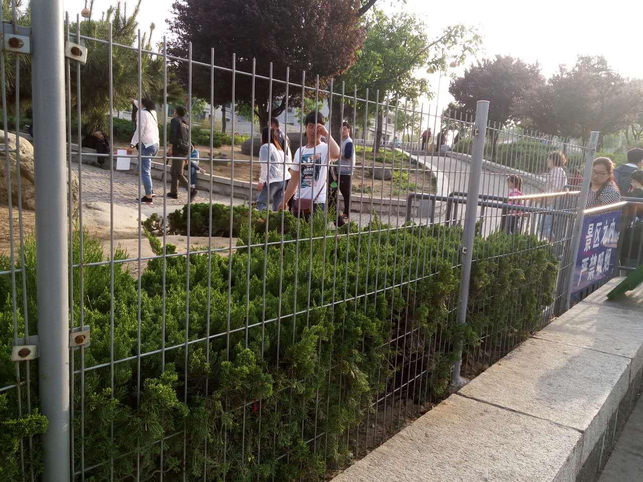 绿化带隔离网